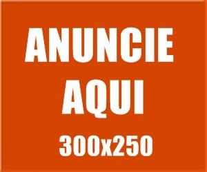 Banner 300x250